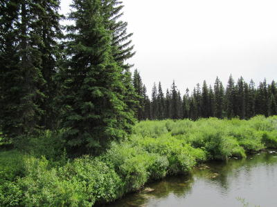 Whitefish Residential Lots & Land For Sale: 4830 Star Meadow Road