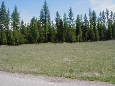 Lincoln County Residential Lots & Land For Sale: 350 Cabinet View Country Club Road