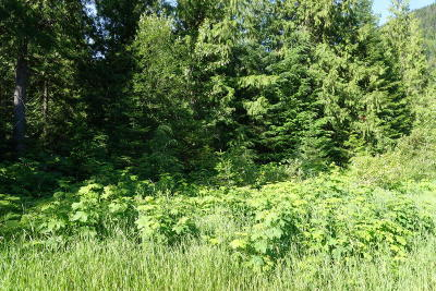 Lincoln County Residential Lots & Land For Sale: Northshore Drive