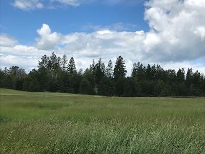 Bigfork Residential Lots & Land For Sale: 150 Hill Road