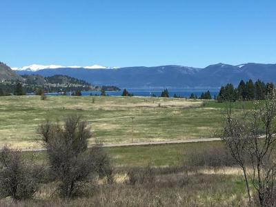 Lake County Residential Lots & Land For Sale: Nhn Hwy 93 Tract A