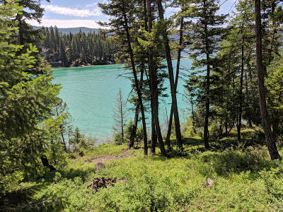 Flathead County Residential Lots & Land For Sale: 3910 North Ashley Lake Road
