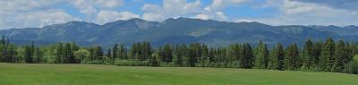 Columbia Falls Residential Lots & Land For Sale: 1084 Sawtooth Trail
