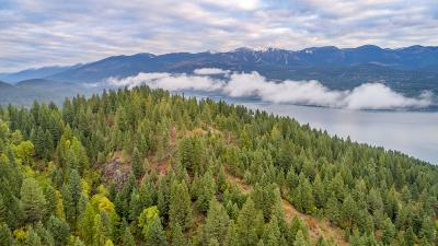 Flathead County Residential Lots & Land For Sale: 229 Good Medicine Drive