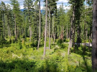 Bigfork Residential Lots & Land For Sale: 147 Chief Cliff Trail