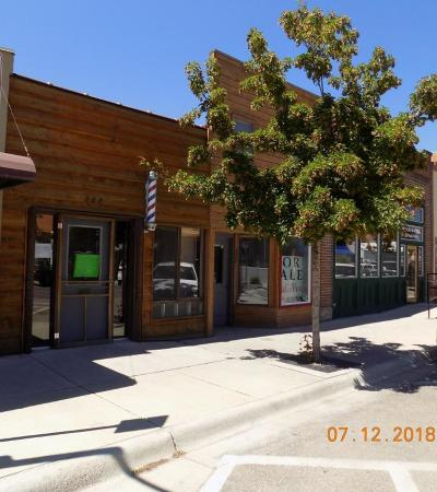 Lake County Commercial For Sale: 222 Main Street