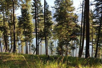 Alberton, Saint Regis, Huson, Heron, Noxon, Paradise, Superior, Thompson Falls, Trout Creek Residential Lots & Land For Sale: Nhn Parkland Drive