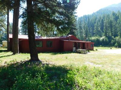 Bonner, Potomac Single Family Home For Sale: 11690 Highway 200 East