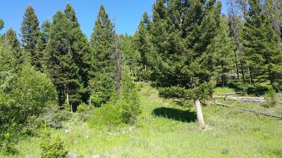 Drummond Residential Lots & Land For Sale: Nhn Dry Mulkey Gulch Road
