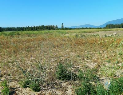 Kalispell Residential Lots & Land For Sale: 2065 Mahogany Avenue