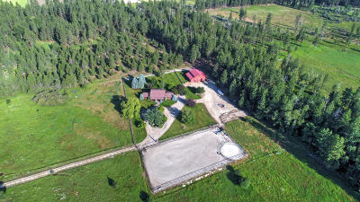 Stevensville Single Family Home For Sale: 352 North Kootenai Creek Road