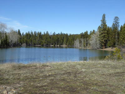 Flathead County Residential Lots & Land For Sale: Nhn Idaho Hill Road