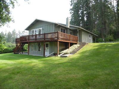Lake County Single Family Home For Sale: 31992 Skidoo Lane