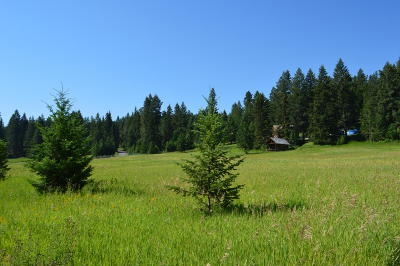 Flathead County Single Family Home Under Contract Taking Back-Up : 5058 Whitefish Stage Road