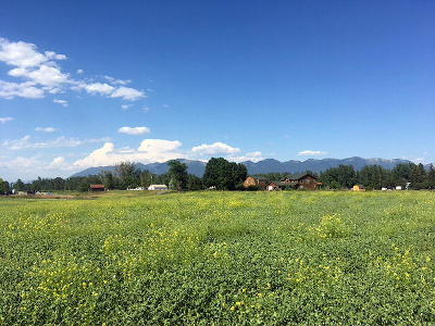 Flathead County Residential Lots & Land For Sale: Parcel D Wagner Lane