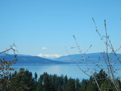 Lake County Residential Lots & Land For Sale: 23050 Yellow Bay Lane