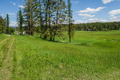 Whitefish Residential Lots & Land For Sale: 350 Bear Trail