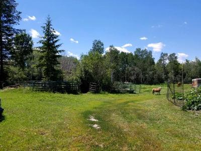 Kalispell Residential Lots & Land For Sale: 264 Willow Glen Drive