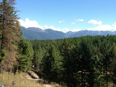 Bigfork Residential Lots & Land For Sale: 727 Grayling Lake Drive