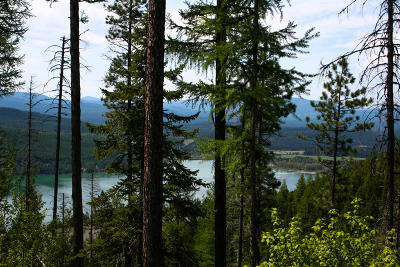 Whitefish Residential Lots & Land For Sale: Nhn East Lakeshore Drive