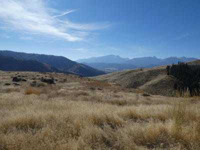 Ravalli County Residential Lots & Land For Sale: Nhn Thor Road