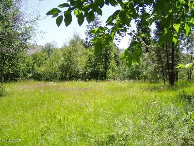 Darby Residential Lots & Land For Sale: 206 Chief Joseph Trail