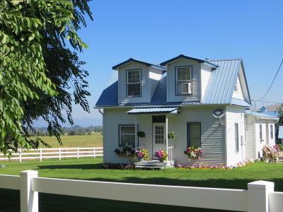 Stevensville Single Family Home For Sale: 1246 South Burnt Fork Road