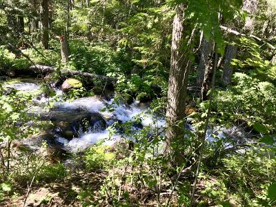 Flathead County Residential Lots & Land For Sale: Nhn Slethaug