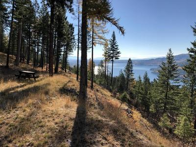 Flathead County Residential Lots & Land For Sale: 67 Eagle Creek Trail