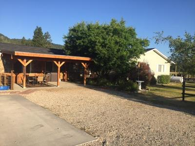 Darby Single Family Home For Sale: 4573 Basin Court