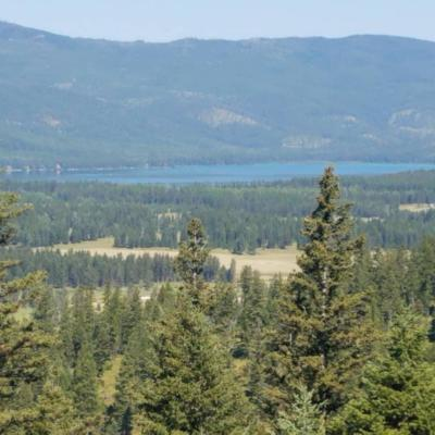 Kalispell Residential Lots & Land For Sale: Tract 3 Hodge Creek Road