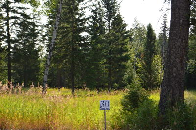 Columbia Falls Residential Lots & Land For Sale: 1141 Timber Ridge Court
