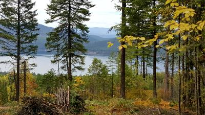 Whitefish Residential Lots & Land For Sale: 121 Whitefish Lookout Road