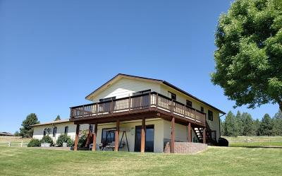 Frenchtown Single Family Home For Sale: 18801 Sorrel Springs Lane