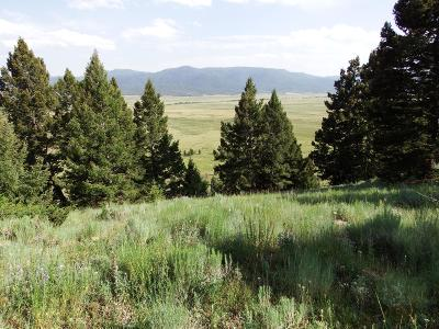 Butte Residential Lots & Land For Sale: Lowland Road Tract A
