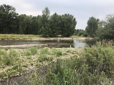Ravalli County Residential Lots & Land For Sale: Nhn Hwy 93 South