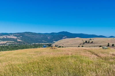 Missoula County Residential Lots & Land For Sale: 3754 Trails End Road