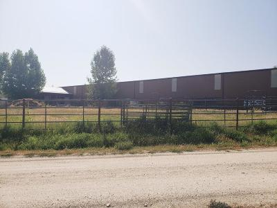 Stevensville Single Family Home For Sale: 498 El Capitan Loop