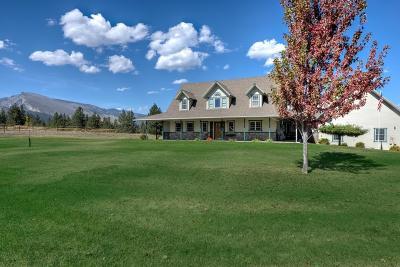 Hamilton Single Family Home For Sale: 138 Denali Street
