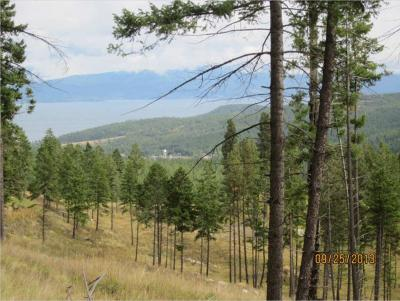 Lakeside Residential Lots & Land For Sale: 163 Eagles Landing