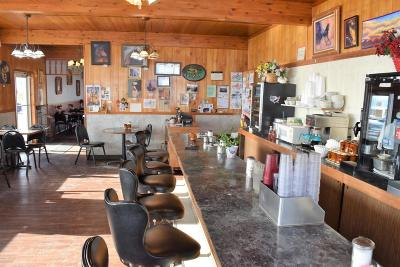 Lake County Commercial For Sale: 68056 Hwy 93