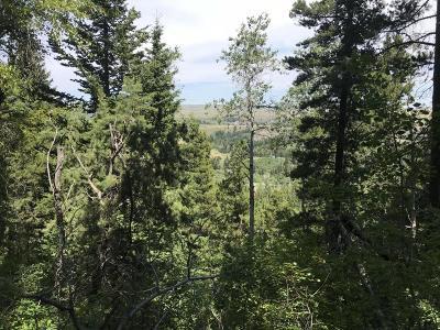East Glacier Park Residential Lots & Land For Sale: Nhn Big Springs Trail