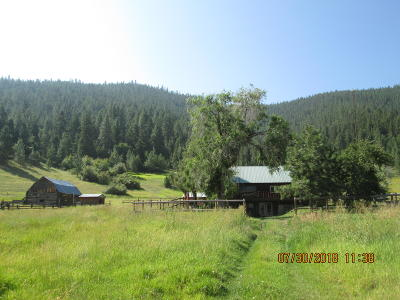 Elmo Single Family Home Under Contract Taking Back-Up : 51979 Montana Highway 28