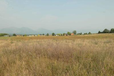 Corvallis Residential Lots & Land For Sale: 1135 Prosperity Place