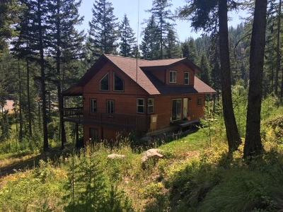 Kalispell Single Family Home For Sale: 1100 Patrick Creek Road
