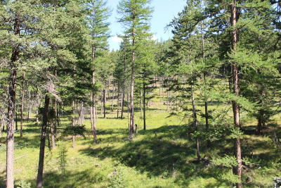Kalispell Residential Lots & Land For Sale: Nhn Soler Run