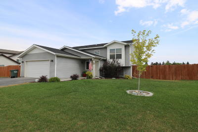 Kalispell Single Family Home For Sale: 245 Lupine Drive