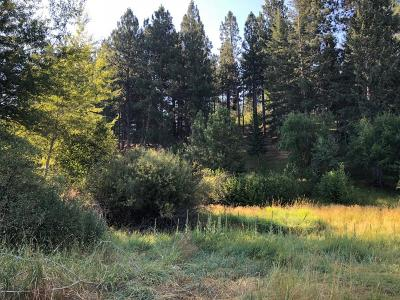 Ravalli County Residential Lots & Land For Sale: 305 Jorgy Way
