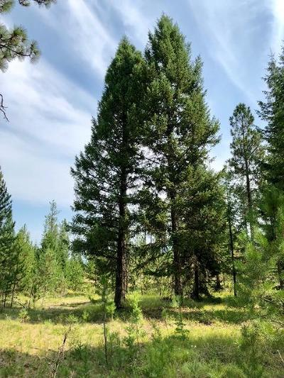 Lincoln County Residential Lots & Land For Sale: 39840 Us-2