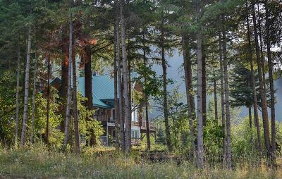 Trout Creek Single Family Home For Sale: 14 Larch Creek Lane